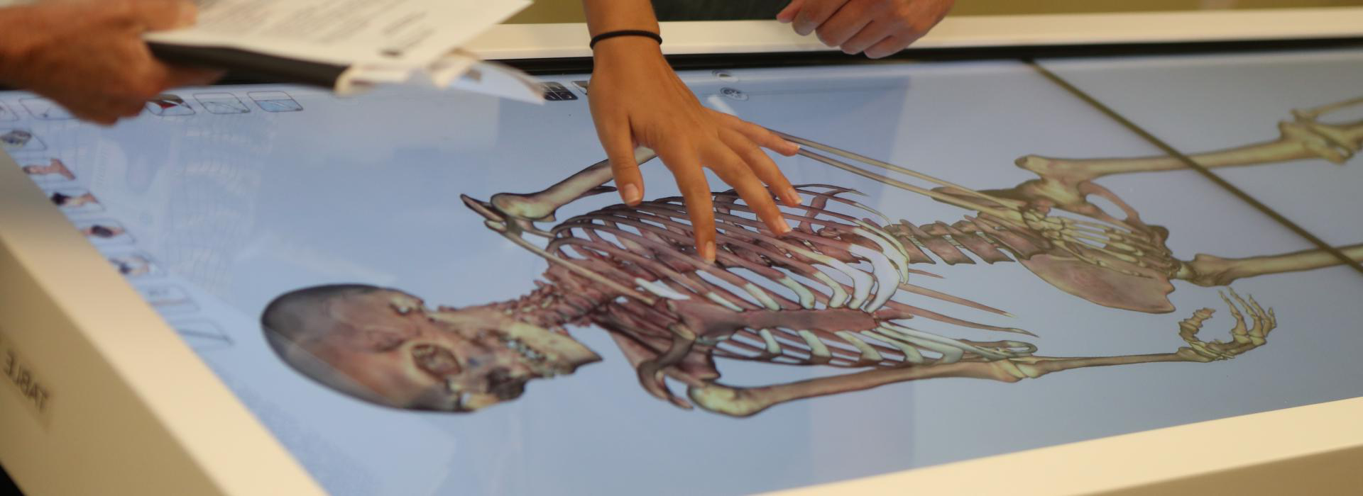 PA students use the Anatomage Table
